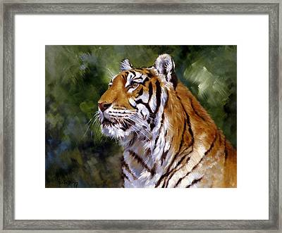 Tiger Alert Framed Print by Silvia  Duran