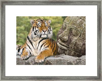 Tiger And Buddha Framed Print