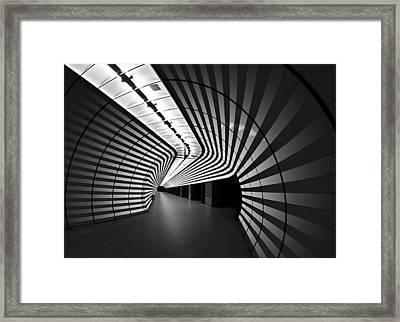 Tiger Framed Print by Arnd Gottschalk