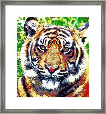 Tiger Art Framed Print