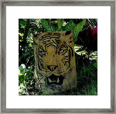 Tiger Framed Print by Calixto Gonzalez