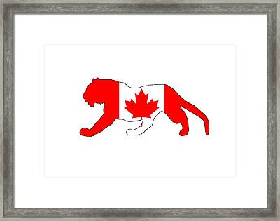 Tiger Canada Framed Print