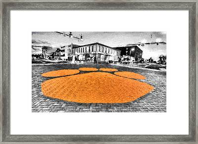 Tiger Country Framed Print by JC Findley