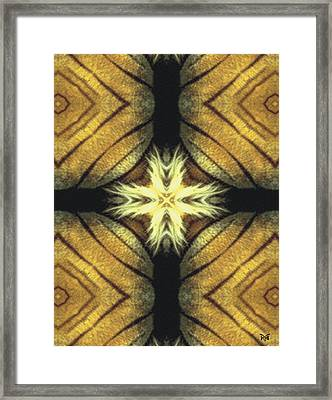 Tiger Cross Framed Print by Maria Watt