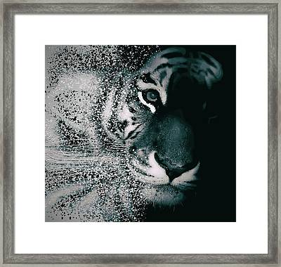 Tiger Dispersion Framed Print