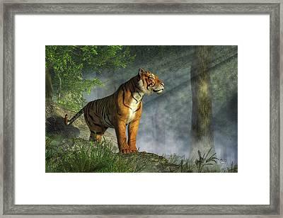 Tiger In The Light Framed Print by Daniel Eskridge
