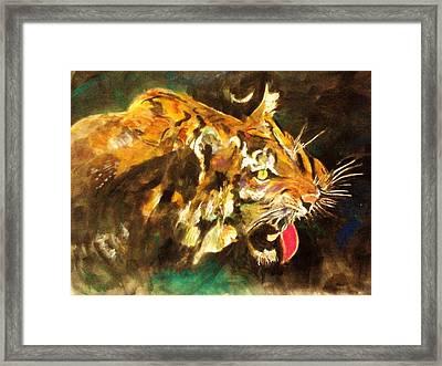 Tiger Framed Print