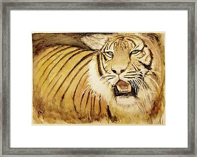 Tiger King Framed Print by Annie Poitras