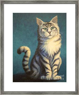 Tiger Kitty Framed Print