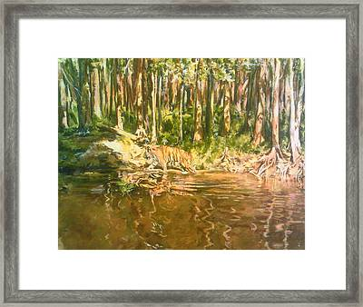 Tiger Lake Framed Print