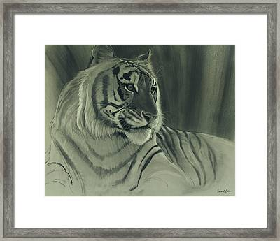 Tiger Light Framed Print by Aaron Blaise