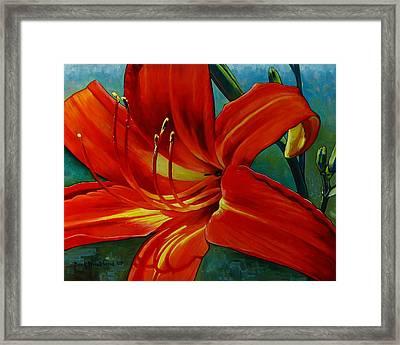 Tiger Lily Framed Print by Doug Strickland
