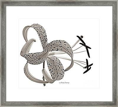 Tiger Lily In Black And White Framed Print by Chris Berry