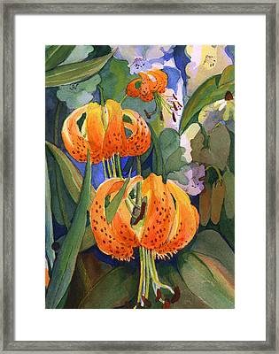 Tiger Lily Parachutes Framed Print by Nancy Watson