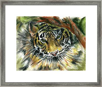 Tiger Framed Print by Marilyn Barton