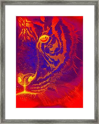 Tiger On Fire Framed Print
