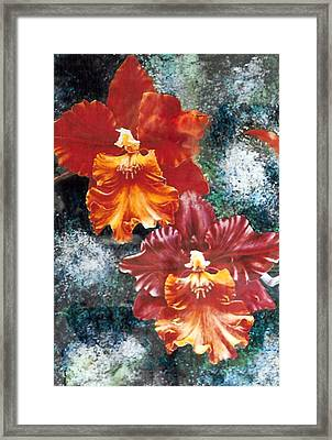 Tiger Orchids Framed Print by JoLyn Holladay