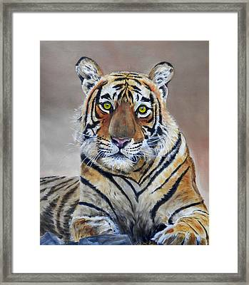 Tiger Portrait Framed Print