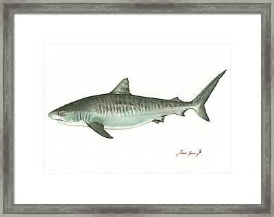 Tiger Shark,  Framed Print
