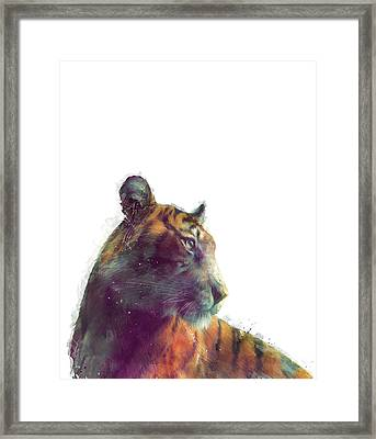 Tiger // Solace - White Background Framed Print by Amy Hamilton