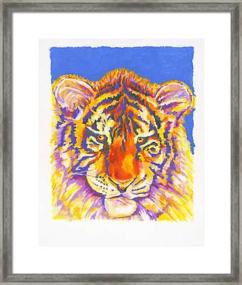 Tiger Framed Print by Stephen Anderson