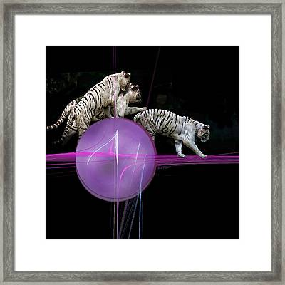 Tiger Tag Framed Print