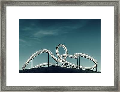 Tiger Versus Turtle. Framed Print by Mibo Photography