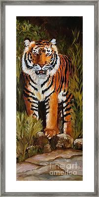 Tiger Wildlife Art Framed Print by Mary Jo Zorad