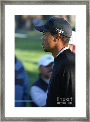 Tiger Woods IIi Framed Print by Chuck Kuhn