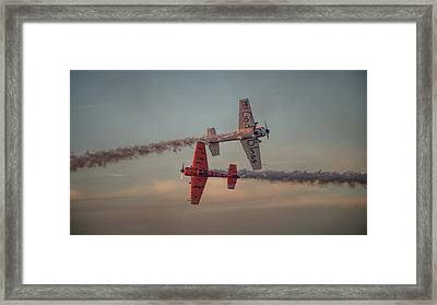 Tiger Yak 55 Framed Print