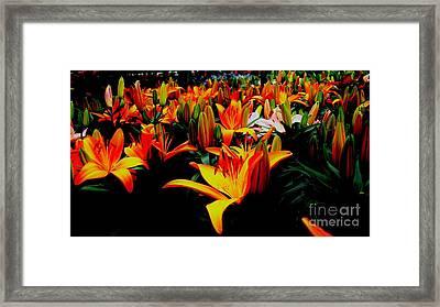 Tigerlily Bed Framed Print by Marsha Heiken