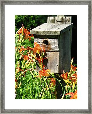 Tigerlily House Framed Print