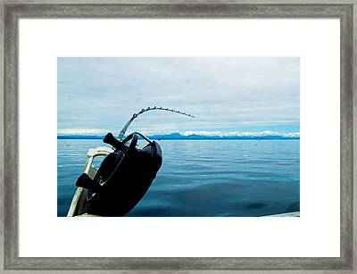 Tight Line Framed Print by Michael Potts