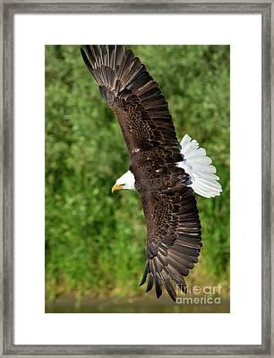 Tight Turn Framed Print by Mike Dawson