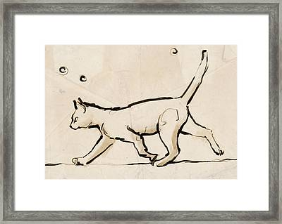 Tightrope Walking Framed Print