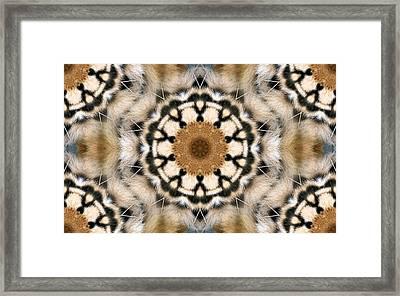 Tigre Framed Print