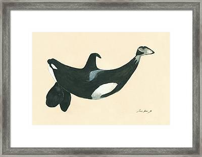 Tilikum Killer Whale Framed Print