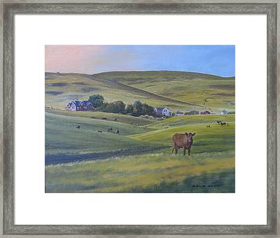 Till The Cows Come Home Framed Print by David Hunt