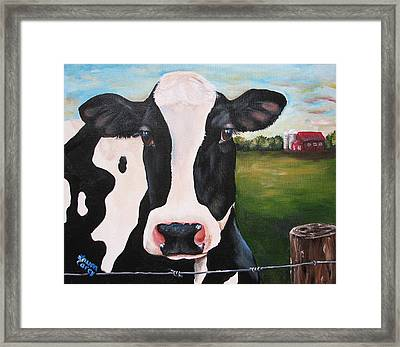 Till The Cows Come Home Framed Print by Laura Carey
