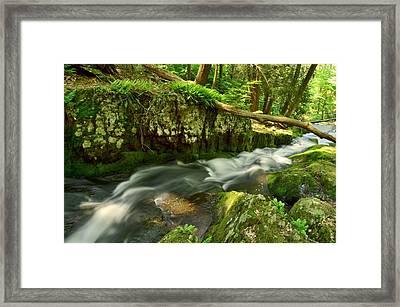 Tillmans Ravine, Stokes State Forest Framed Print