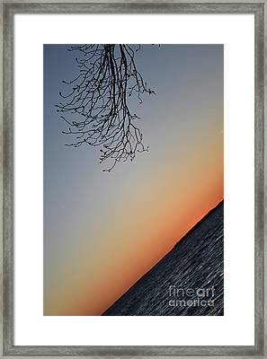 Tilted Exposure Framed Print by Skip Willits