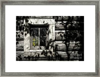 Framed Print featuring the photograph Timber Hand-crafted by Brad Allen Fine Art