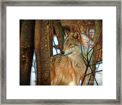 Timber Wolf Colorful Art Framed Print