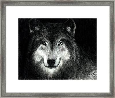 Timberwolf Framed Print by Bob Schmidt