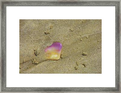 Time At The Beach Framed Print by JAMART Photography
