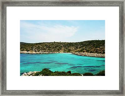 Time For A Swim Framed Print by Jacqueline Doulis