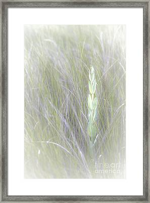 Time For Change Framed Print