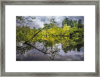 Time For Reflecting Framed Print by Debra and Dave Vanderlaan