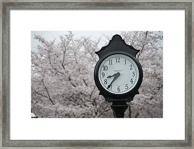Time For Spring Framed Print by Dan Friend