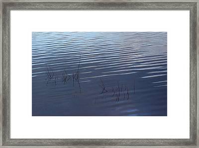 Time Passes Framed Print by Marilynne Bull